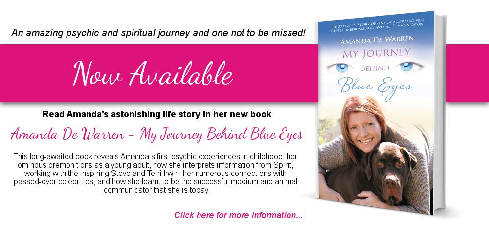 Amanda De Warren - My Journey Behind Blue Eyes